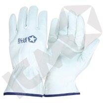 BlueStar Soft Tech